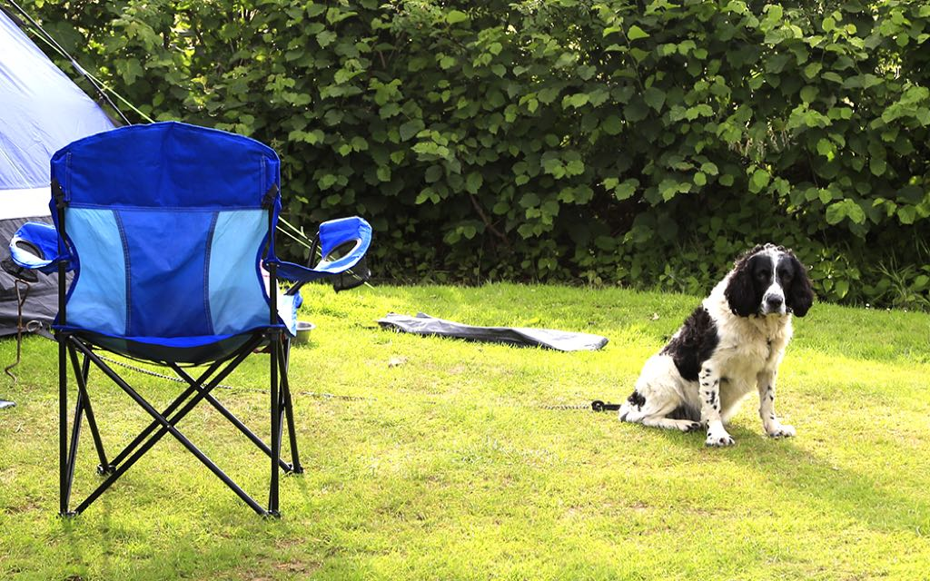 Camping with dogs Ullswater Holiday Park